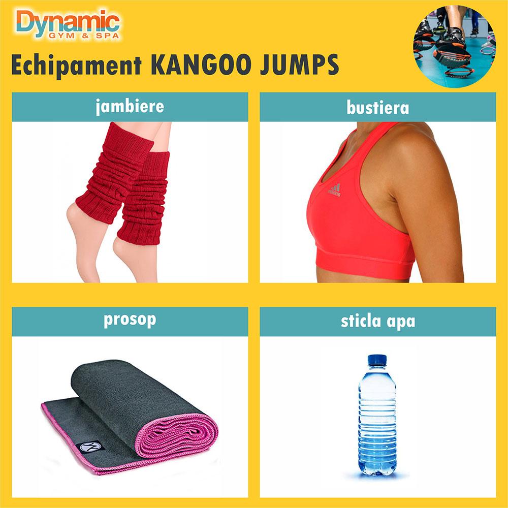 echipament-kangoo